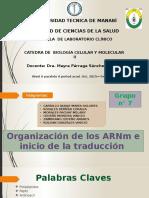 Organización de Los ARNm e Inicio de La Traducción