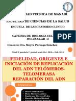 Fidelidad, Orígenes e Iniciación de Replicación Del ADN Telómeros- Telomerasa Reparación Del ADN