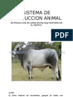Produccion de Carne Bovina Bajo Pastoreo en El Trópico Esquipo 7.