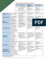 Rubrica Para Evaluar Organizador Grafico