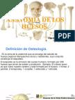 ANATOMIA Y FISIOLOGIA DE LOS HUESOS. OPAL H Y DANIELA L..pdf
