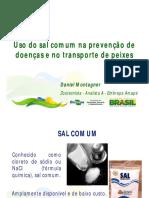 uso_do_sal_doencas_transporte_peixes_daniel_montagner.pdf