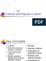Chapter 13- Culture