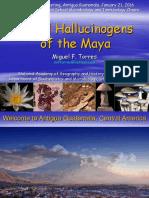 Ritual Hallucinogens of the Maya