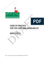 Draft Beef Code Dec 2012