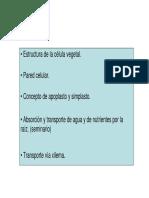 Tema 1 A.pdf