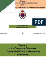 TEMA 1 DCCSSI.pdf