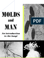 The Molds and Man