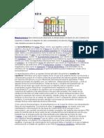 Termodinámic1