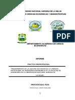 Pip..Mejoramiento de Los Servicios Academicos de La Carrera Profesional de Agronomia de La Unas