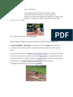 Eventos de Campo en El Atletismo