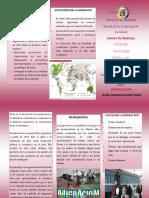 Migracion en El Ecuador Sociologia