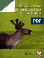 Report Caribou