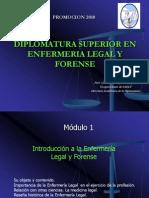 Modulo I Diplomatura Superior  en Enfermeria Legal y Forense UAI - SAELF