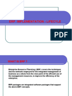 02 ERP Implementation Lifecycle
