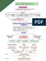Resume Proces Penal