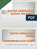 presentasisistemperedarandarah-121031015330-phpapp01