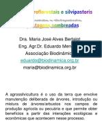 PDF2016Modulo3_pastos sombreados