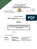 TH2417.pdf