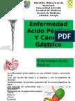 Enf Acido Peptica y Cancer Gastrico