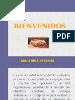 Curso de Auditoria Interna