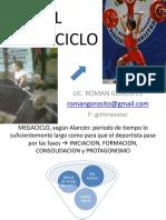 PlanificacionEL MEGACICLOromangorosito JUJUY 2014