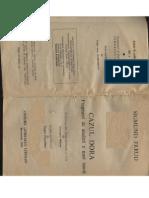 Sigmund Freud Cazul Dora
