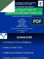 Agglutinations Et Immunochromatographie BON