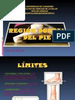 Dorso Del Pie
