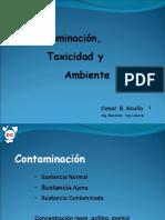 Contaminación, Toxicidad y Ambiente