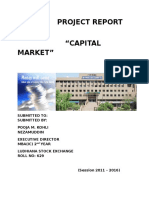 Project Report on Capital Market