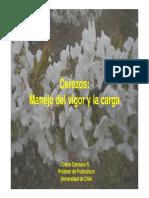 Manejo de La Carga y El Vigor en Cerezos - Oscar Carrasco