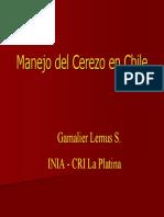Cerezos Sistemas de Formacion en Chile