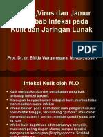 Bakteri Dan Virus Penyebab Infeksi Pada Kulit Dan