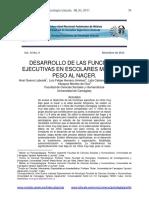 DESARROLLO DE LAS FUNCIONES EJECUTIVAS EN ESCOLARES MUY BAJO PESO AL NACER.