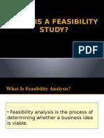 Final Feasability Study