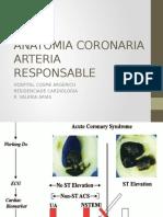 ANATOMIA CORONARIA.pptx