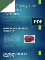Morfo-fisiología de Los Anexos Ovulares