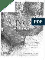 Crossing Bridge Journal