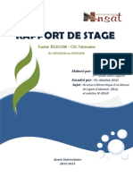 rapportfianl2-140819032853-phpapp01.pdf