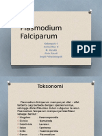 Plasmodium Falciparum PPT