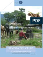 Revista del Valle