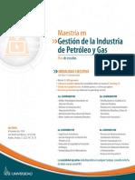 Htm Online Ejecutiva Maestras Gestin de La Industria de Pg