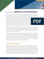 Reporte Mensual de inversiones