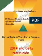 Capacitacion Producto Enero 18 de 2014