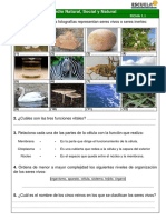 257997560-Quimica-Ambiental-Curso-Completo-pdf.pdf