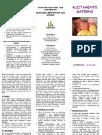 Folder Aleitamento Materno