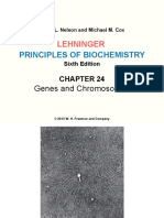 Lehninger LCA Ch24