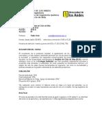 Programa LCA 2015-II Pregrado (3)