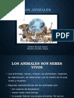 Presentación Los animales